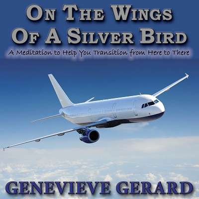 On The Wings Of A Silver Bird Meditation by Genevieve Gerard
